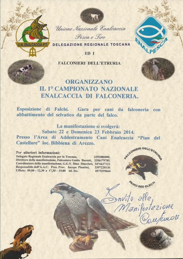 falconeria_2014