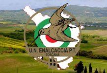 Enalcaccia Toscana
